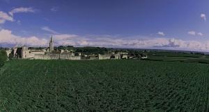 Saint-Emilion et ses vignobles